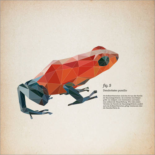 Wall sticker fig5 polygon frog square