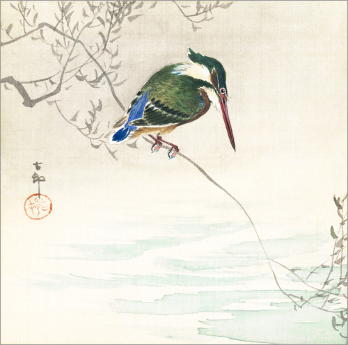 Wall sticker The kingfisher