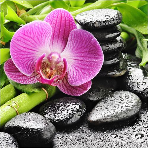 Wall sticker Zen stones and pink orchid