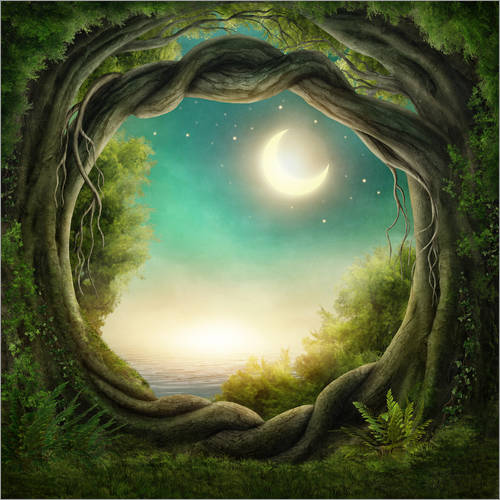 Wall sticker Illustration of a magic forest