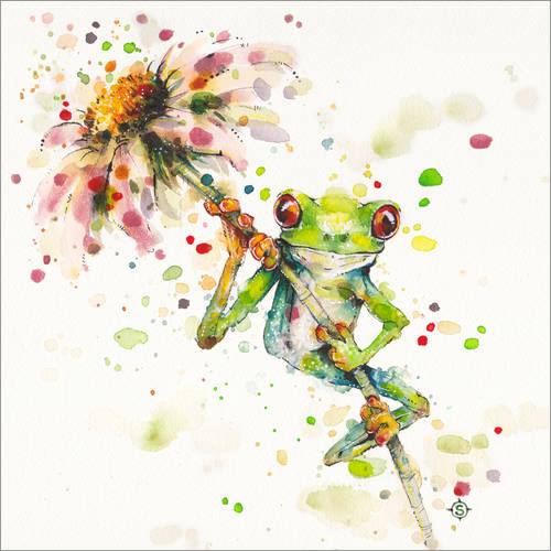 Wall sticker Hello there, bright eyes (Green tree frog)