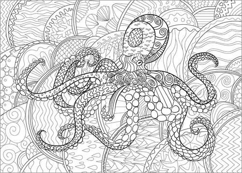 Colouring poster Funky Octopus