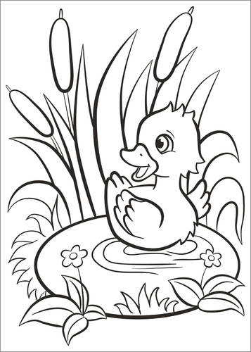 Colouring poster Duckling in the pond