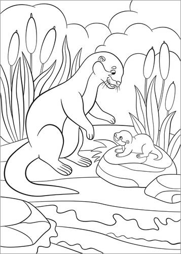 Colouring poster Otter family