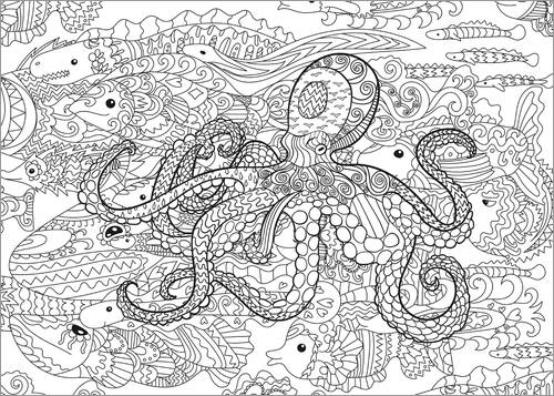 Colouring poster Fish species of the sea