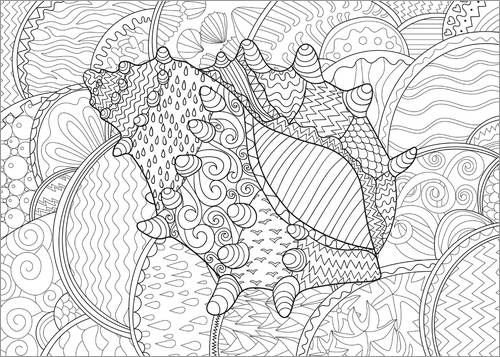 Colouring poster Sea shell in the sea