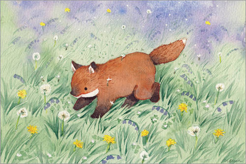 Poster Fox in the meadow