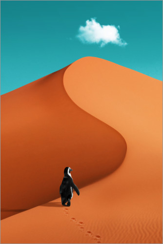 Premium poster Penguin on vacation