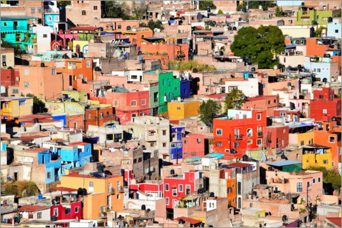 Premium poster Colorful houses view of mexican city Guanajuato