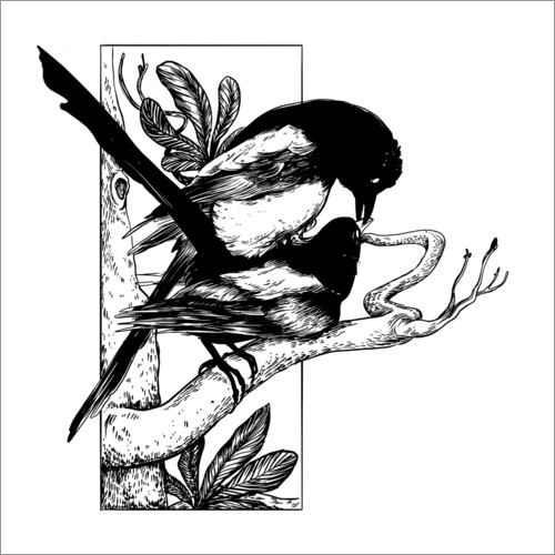 Wall sticker Like the magpies