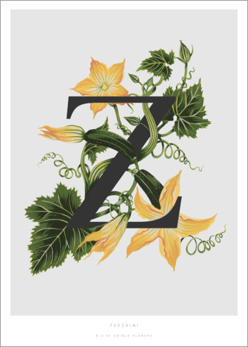 Premium poster Z is for Zucchini