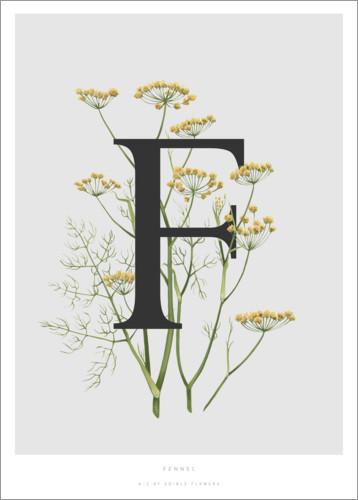 Premium poster F is for Fennel