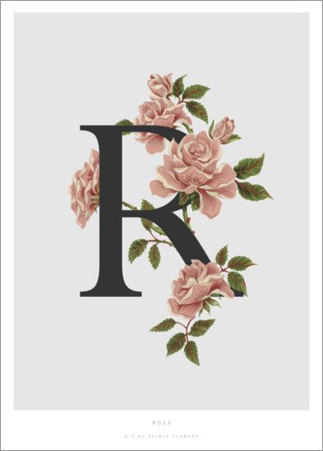 Premium poster R is for Rose