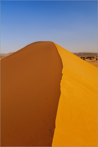 Premium poster Sand dune in the Sahara