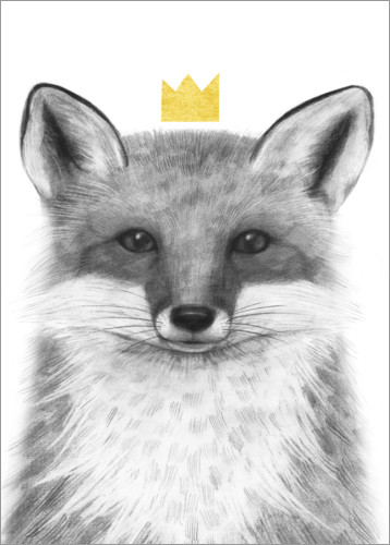 Poster Royal fox