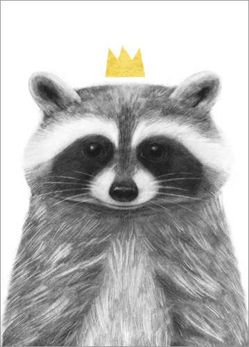 Premium poster Royal raccoon