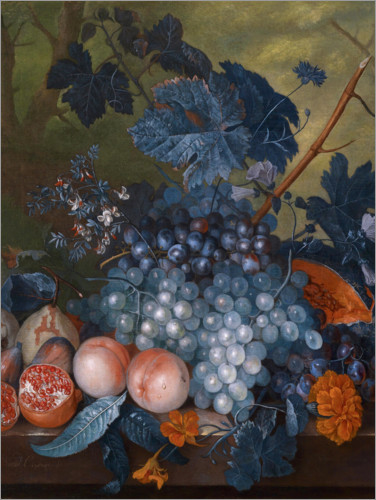 Premium poster Still life with grapes, pomegranates and other fruits