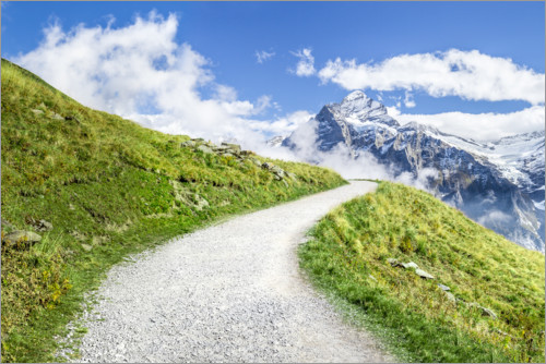 Premium poster Path along the Swiss Alps in Grindelwald