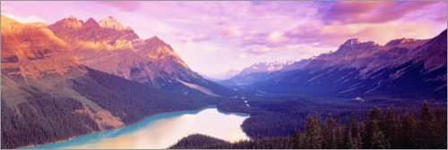 Premium poster Pastel shades on Peyto Lake in Canada