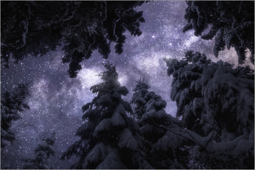 Premium poster Winter night under the Milky Way