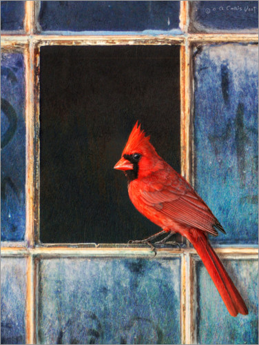 Premium poster Cardinal at the window