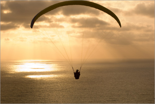 Premium poster Paraglider over the ocean