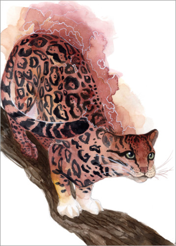 Premium poster Watercolor Ocelot