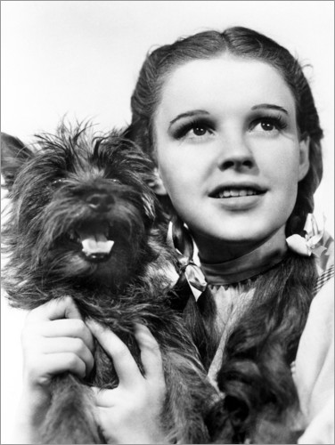 Premium poster Judy Garland, the Wizard of Oz