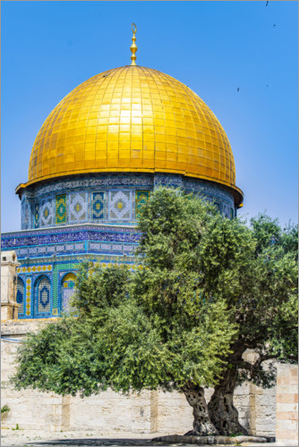 Premium poster Dome of the Rock with olive tree