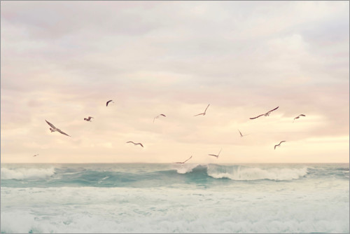 Premium poster Seagulls in the surf