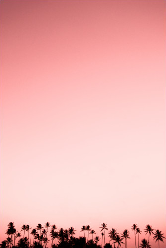 Premium poster Palm trees in pink sky