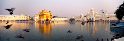 Premium poster Reflection of the Golden Temple