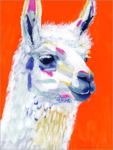 Premium poster Pop Art Lama