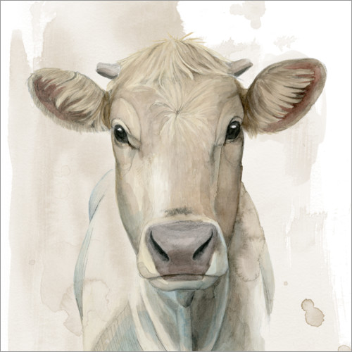 Premium poster Cattle Portrait I