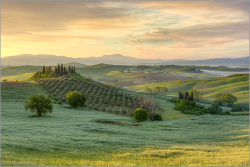 Premium poster Tuscany in the early morning light