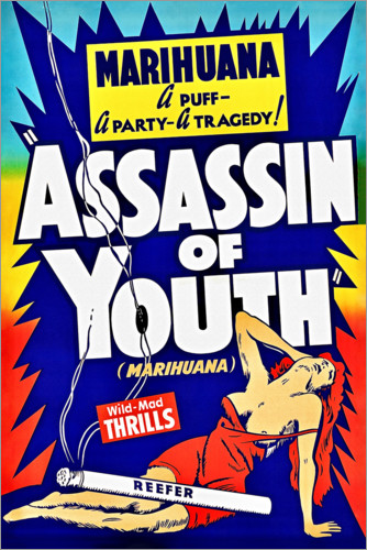 Premium poster Assassin of Youth