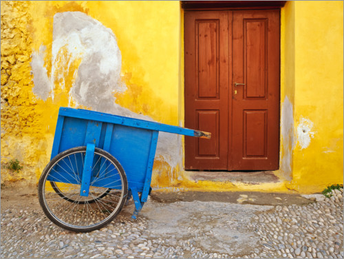 Premium poster House with blue cart