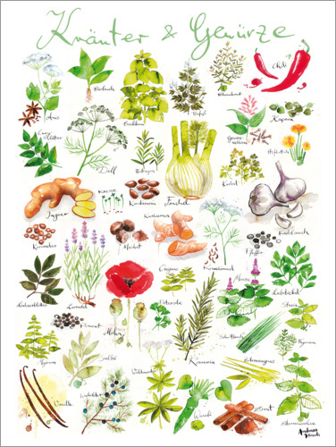 Premium poster Herbs and spices (german)