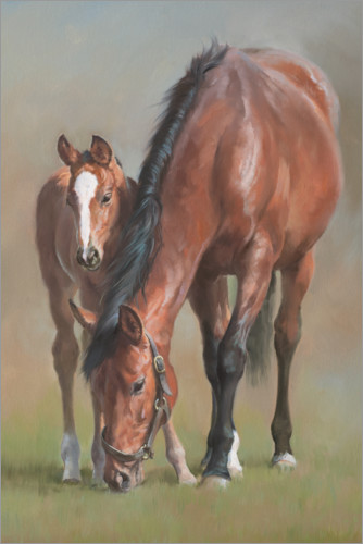 Premium poster Mare with a foal