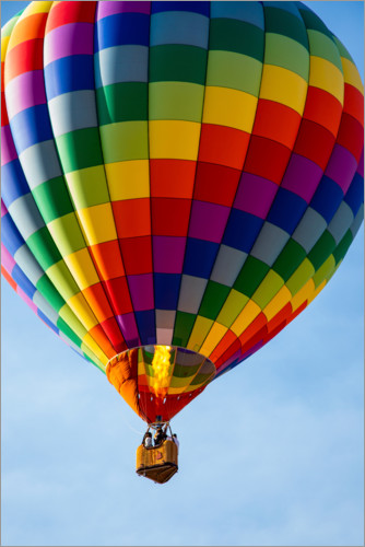 Premium poster Hot air balloon brings color to the sky