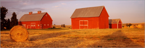 Premium poster Red barns on a farm