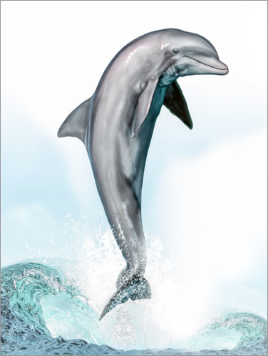 Premium poster Jumping dolphin