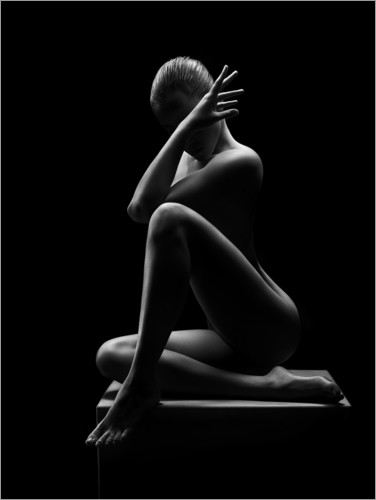 Premium poster Abstract nude