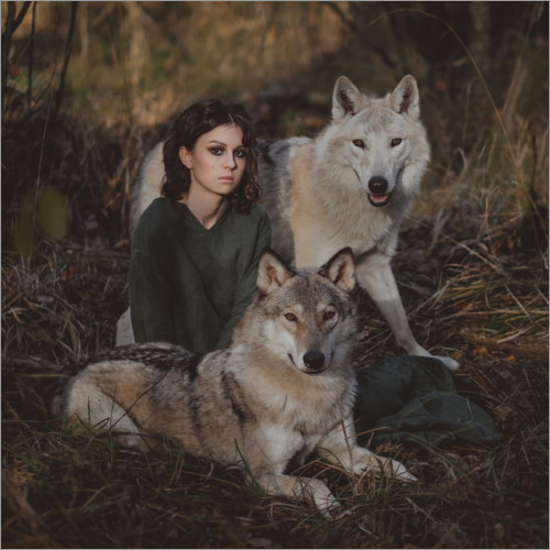 Premium poster The girl and the wolves