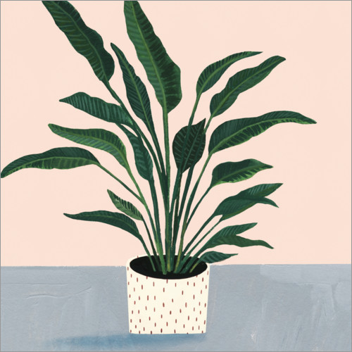 Wall sticker Palm in point pot