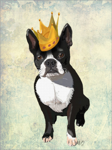 Premium poster Boston Terrier with crown