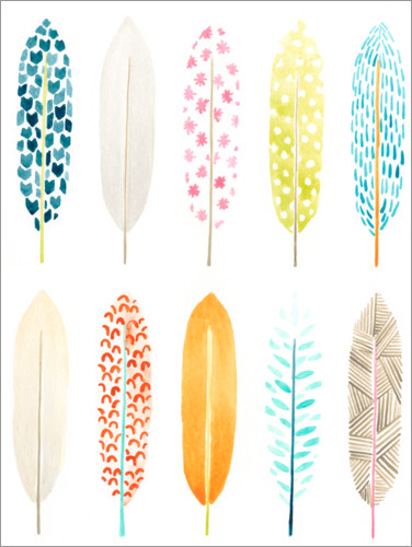 Premium poster Feather Patterns