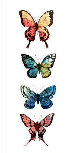 Premium poster Butterfly study I