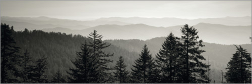 Premium poster Trees with a mountain range in the background