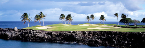 Premium poster Golf course in Hawaii